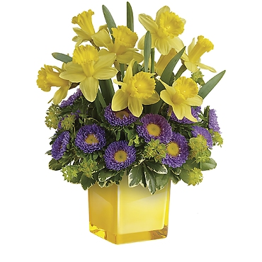Playful Springtime Daffodil Bouquet